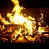 Thumbnail image for San Diego's Fire Pits Saved by Anonymous Gift