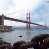 Thumbnail image for San Francisco Labor Council Condemns SEIU's Raid On Other Union Unite-Here.