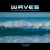 Thumbnail image for Buy the WAVES CD and Help Out the OB Rag