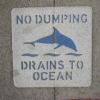 Thumbnail image for Stormwater Decision by Planning Commission Will Adversly Affect Ocean Beach