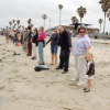 Thumbnail image for 'Hands Across the Sands' from OB to the World