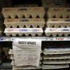 Thumbnail image for Out of Control Egg Producer Flouts Regulations: Consumers Deal with 500 Million Salmonella-Tainted Eggs
