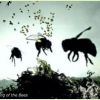 Thumbnail image for Have We Really Solved the Mystery Behind the Shocking Die-off of Bees?