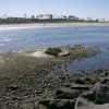 Thumbnail image for The Hitchikers' Guide to Ocean Beach, Attraction #2: Rogers Island