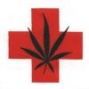 Thumbnail image for Jesus, George Washington and San Diego's Medical Marijuana Struggle