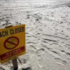 Thumbnail image for OB is one of several SoCal beaches closed due to sewage contamination.