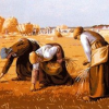 """Thumbnail image for The """"Gleaners"""" of Paris"""