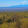 Thumbnail image for I Call on You –  Oh, Mighty Sonoran