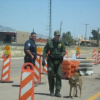 Thumbnail image for My Trip Through the Check-Point Near the California – Arizona Border