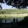 Thumbnail image for Palomar State Park Saved by Non-Profit