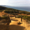 Thumbnail image for Field of View: Torrey Pines State National Reserve