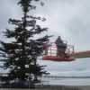 Thumbnail image for Ocean Beach Newport News – Christmas 2012