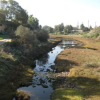 "Thumbnail image for Rose Creek Festival: ""Love Your Wetlands Day"" in Mission Bay"