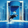 Thumbnail image for Sea World Entertainment and Guantanamo Bay