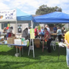 Thumbnail image for Book Sale by Friends of OB Library – Sat., Sept. 26