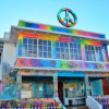 "Thumbnail image for New OB Hostel Owners' Upgrades May Include Covering  Exterior ""OB-esque Hippie Floral Design"""