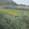 Thumbnail image for The Ocean Beach and Point Loma Peninsula Was Once an Island