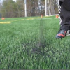 Thumbnail image for Toxic Turf? Movement Grows Against Synthetic Turf
