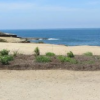 Thumbnail image for Hillside Improvement Project for Sunset Cliffs Park Delayed Again