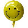 Thumbnail image for Nuclear Shutdown News – June 2015: Balloon Shuts Down Troubled Indian Point Plant