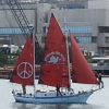 Thumbnail image for Peace Ship Arrives in San Diego Just in Time for Veterans for Peace Convention