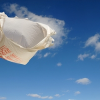 Thumbnail image for If You Live in OB or Point Loma, Where Do Recycled Plastic Bags Go?