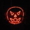"Thumbnail image for ""The Giant Pumpkin"" Lives in Ocean Beach"