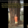 Thumbnail image for This Is Mary Olive with Esperanza … Her Father Planted this Torrey Pine Before WWII.