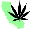Thumbnail image for Prop 64 – Just Legalize Marijuana, Already