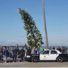 Thumbnail image for The Holidays Take Over Ocean Beach