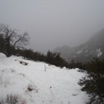 Christmas Morning 2008 in the Laguna Mountains