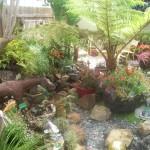 Hidden Garden 9