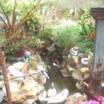 Hidden Garden 10