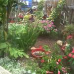 Hidden Garden 11