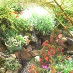 Hidden Garden 12