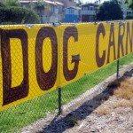 Canine Car 02