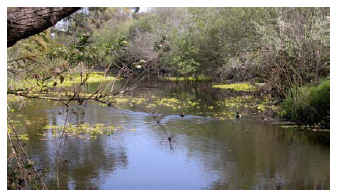 SanDiego River MV