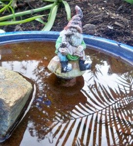 This Gnome negotiates with no middlemen for his H20.  He gets it straight from nature.
