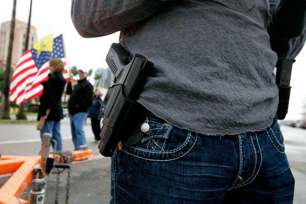 guns on tea party members