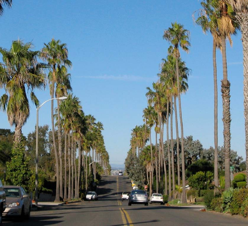 Santa Barbara Street, looking north from Orchard Avenue