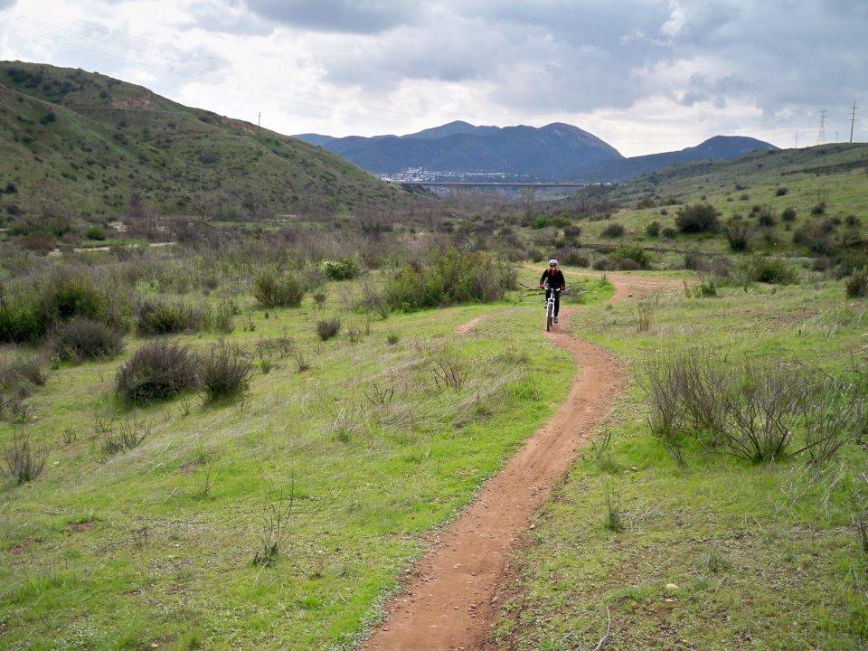 Quail Brush valley