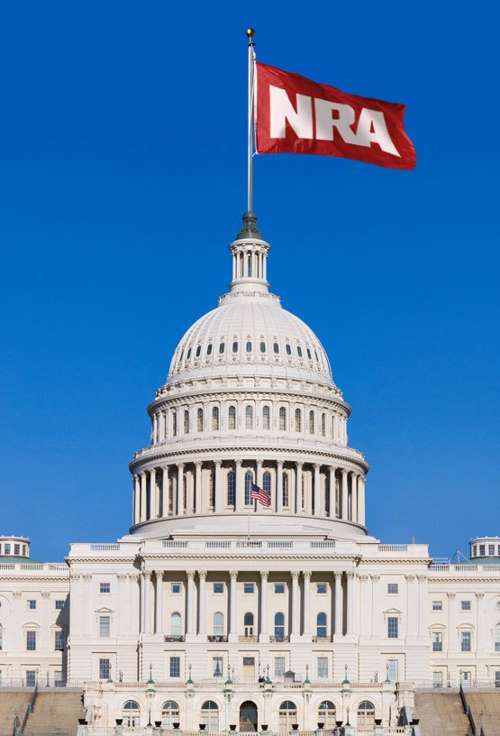 Senate NRA flag