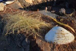 Yucca rope JR 03
