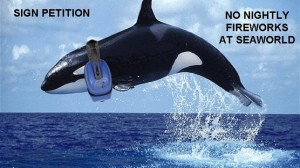 Post image for Tell SeaWorld: Stop the Nightly Fireworks