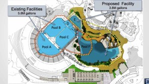 Post image for Coastal Commission Bans Orca Breeding But Approves Tank Expansion