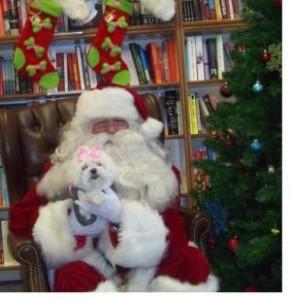 Santa Claus w dog