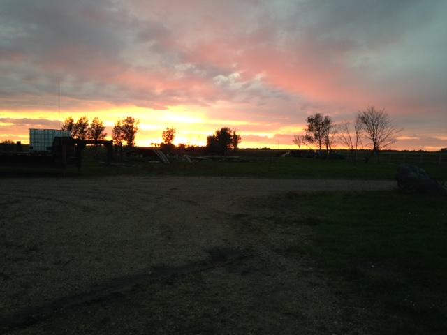 judi-curry-cowboy-sunset