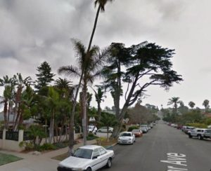 Post image for City to Remove Monterey Cypress Tree on 4800 Block of Del Mar in Ocean Beach